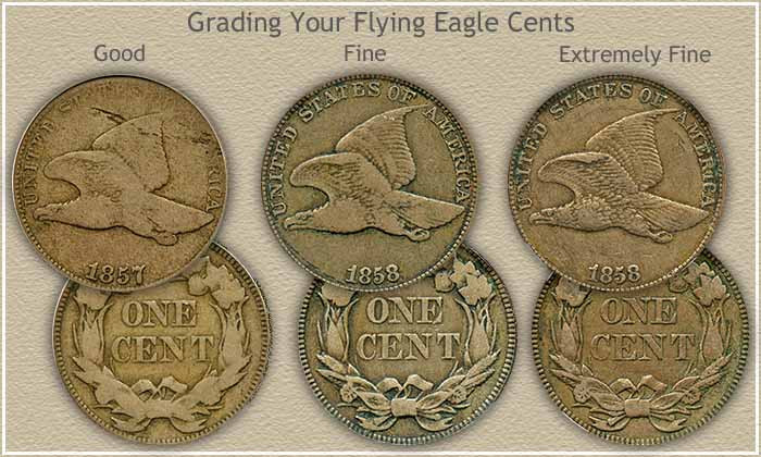 Flying Eagle Cent Unique Flying Eagle Penny Values Of Gorgeous 43 Images Flying Eagle Cent