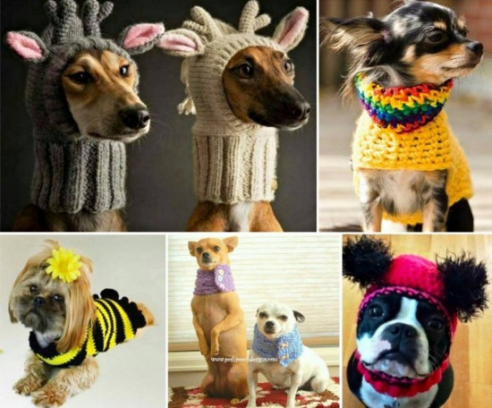 Free Crochet Dog Patterns Fresh Cat Hat Crochet Pattern the Best Collection Ever Of Superb 45 Pictures Free Crochet Dog Patterns