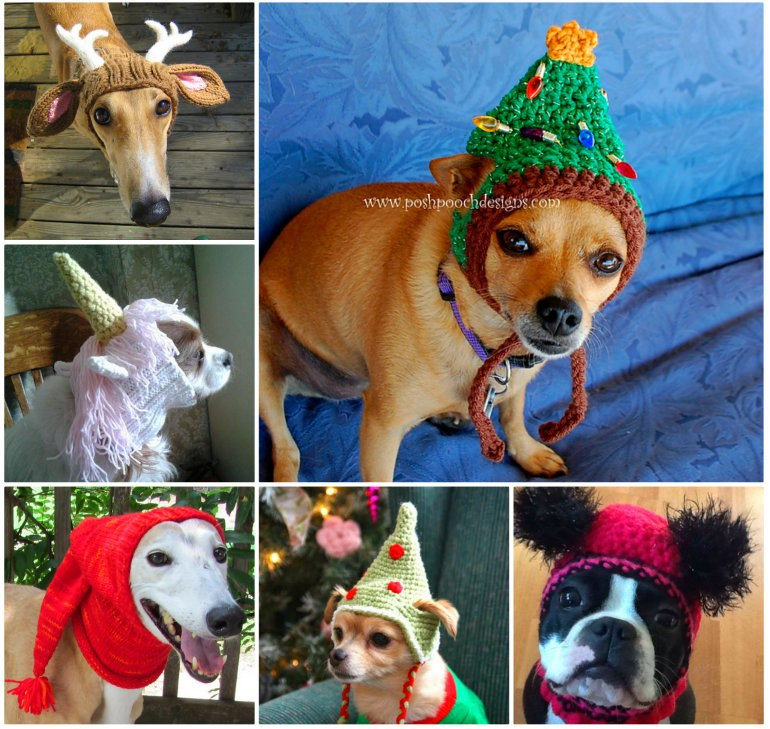 Free Crochet Dog Patterns New Crochet & Knitted Dog Hats Of Superb 45 Pictures Free Crochet Dog Patterns