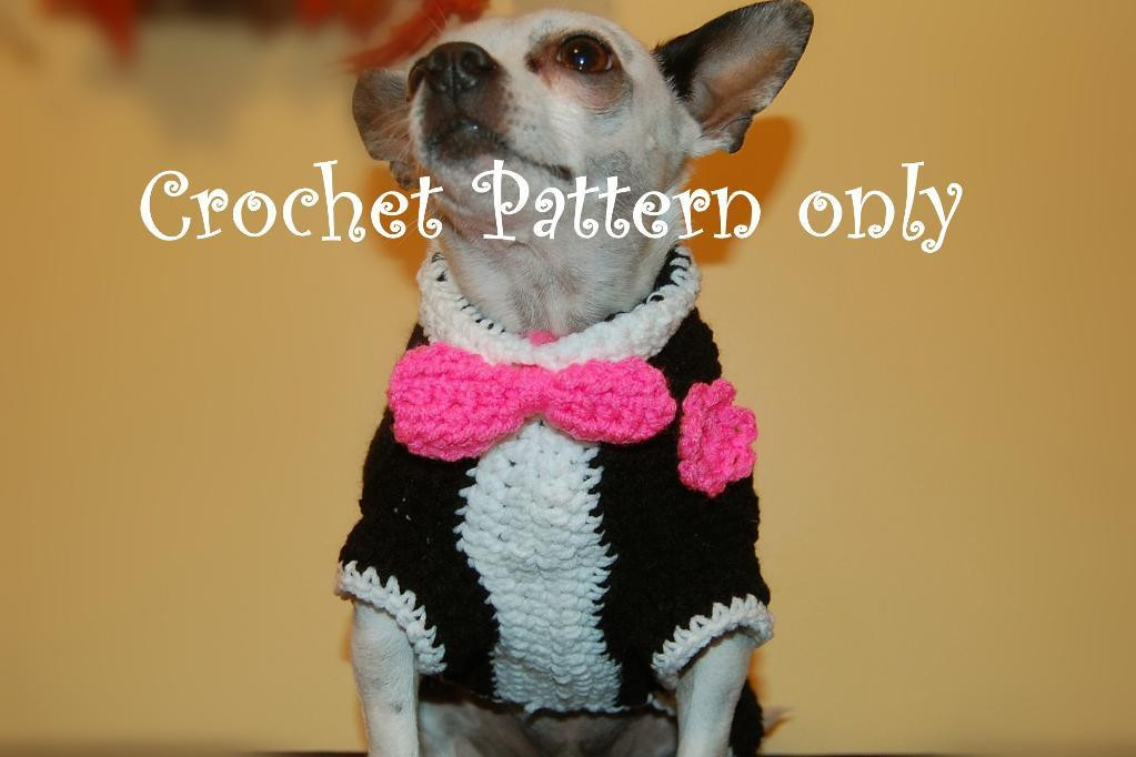Free Crochet Dog Sweater Patterns Best Of Anything Can Be Crochet On Pinterest Of Marvelous 44 Photos Free Crochet Dog Sweater Patterns