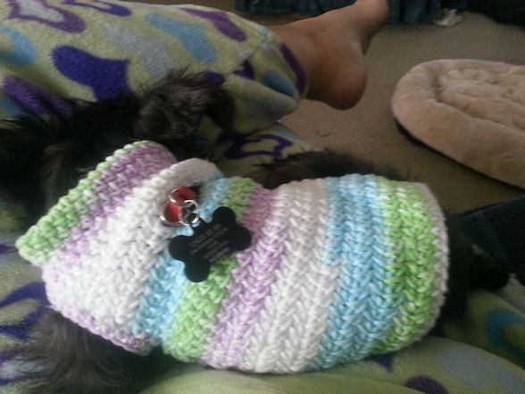 free crochet dog sweater patterns for small dogs