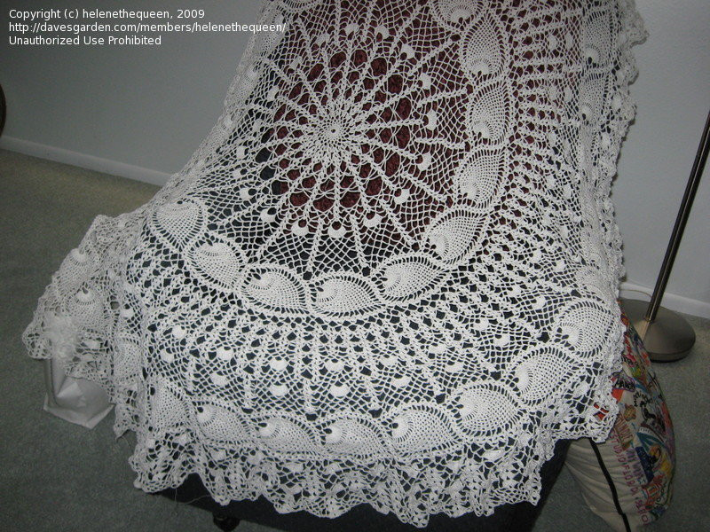 Free Crochet Tablecloth Patterns Luxury Free Crochet Tablecloth Patterns 1960 Crochet and Of Contemporary 40 Pics Free Crochet Tablecloth Patterns