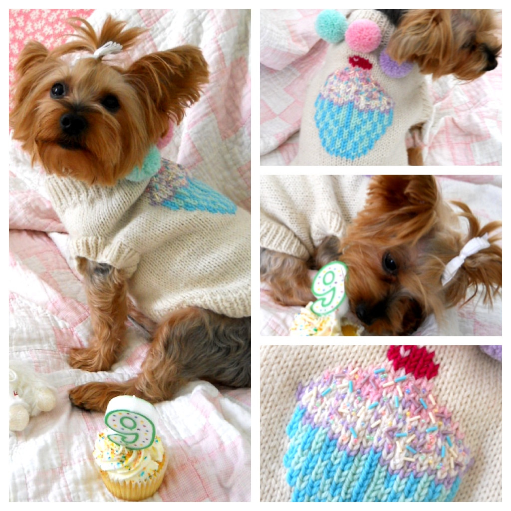 Free Dog Sweater Patterns Best Of Free Patterns Of Innovative 47 Models Free Dog Sweater Patterns