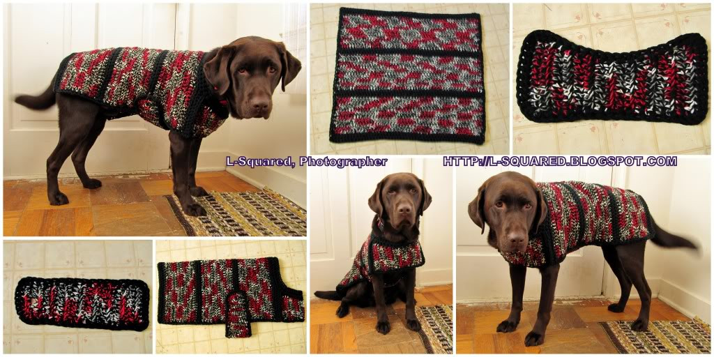 Free Dog Sweater Patterns Fresh the Best Sweaters and Coats to Crochet for Your Dog – Free Of Innovative 47 Models Free Dog Sweater Patterns