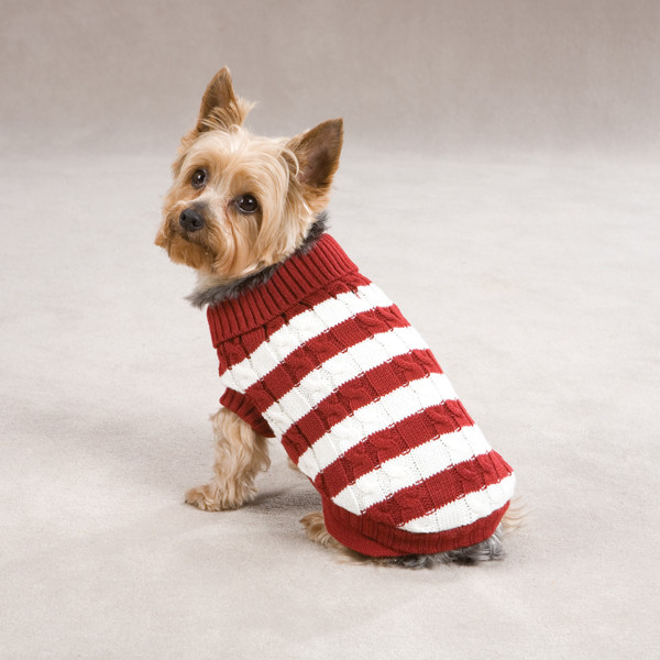 Free Dog Sweater Patterns Inspirational Cabin Striped Turtleneck Dog Sweater Red Of Innovative 47 Models Free Dog Sweater Patterns
