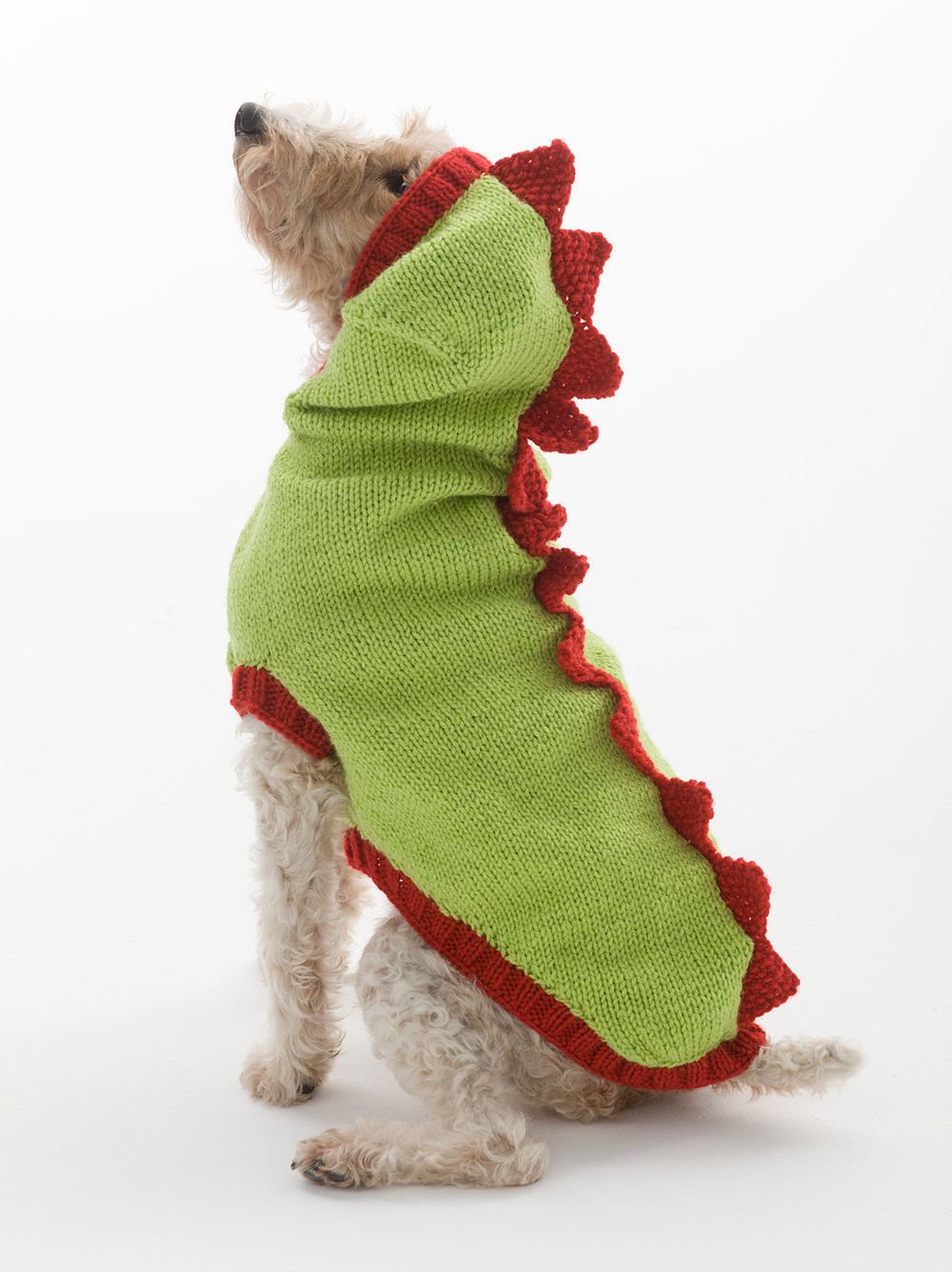 Dragon Slayer Dog Sweater in Lion Brand Wool Ease L