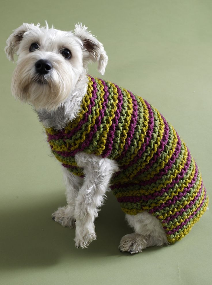 Free Dog Sweater Patterns Inspirational Free Easy Crochet Patterns Of Innovative 47 Models Free Dog Sweater Patterns