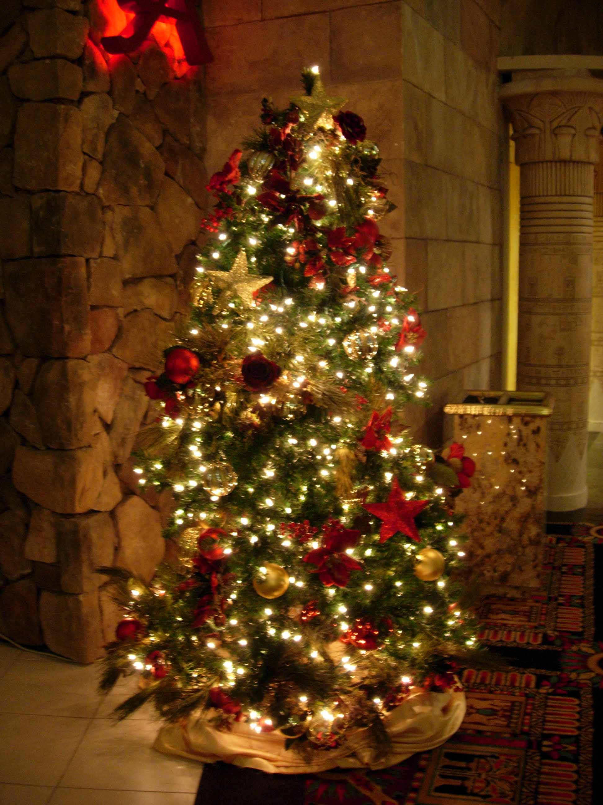 Fresh Christmas Tree Pics 01 Christmas Tree and Decorations Of Delightful 50 Pictures Christmas Tree and Decorations