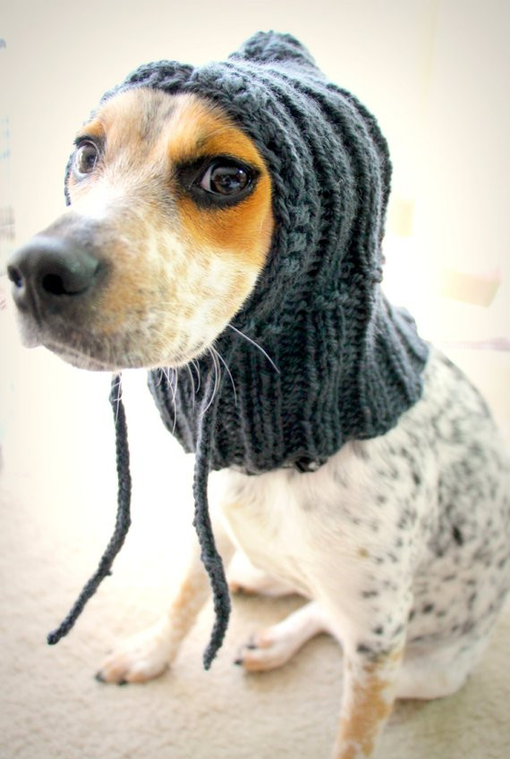Fresh Custom Knit Dog Hat Dog Hoo Pet Scarf Pet Clothes Dog Knitted Dog Hats Of Innovative 49 Images Knitted Dog Hats
