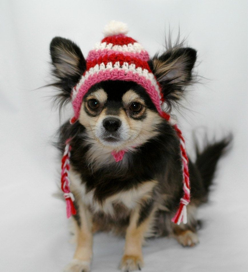Dog hat crocheted with ear flap braids Pink Red by ShaggyC