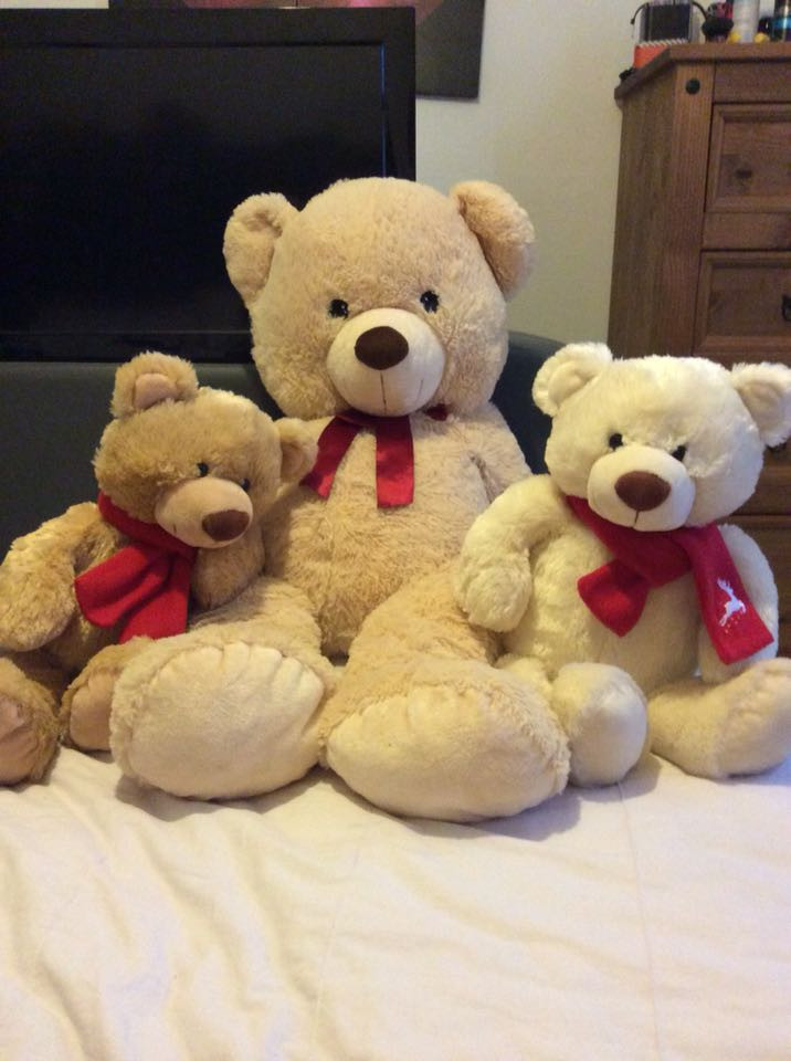 Fresh Extra Teddy Bear for Sale In Uk Stuffed Bears for Sale Of New 48 Ideas Stuffed Bears for Sale