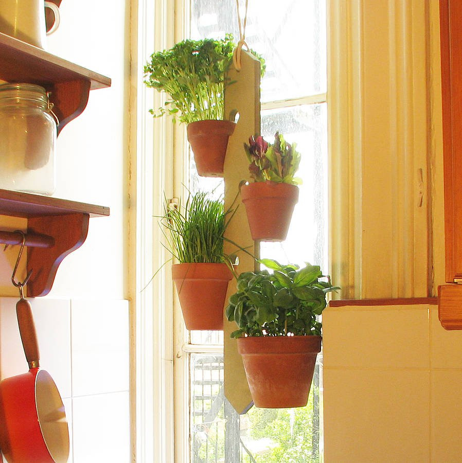 Hanging Plant Holders Awesome Four Pot Hanging Plant Holder by Potnotch Of Wonderful 48 Ideas Hanging Plant Holders
