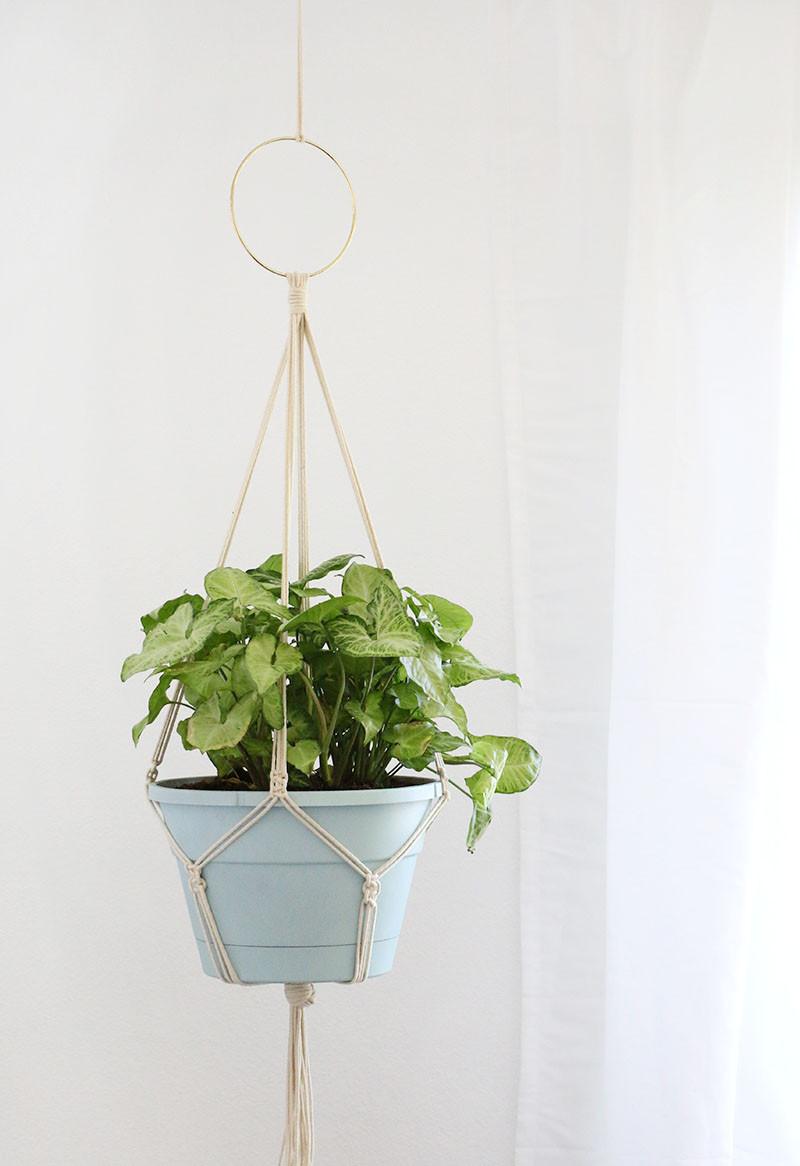 Hanging Plant Holders Beautiful Simple Diy Macrame Plant Hanger Persia Lou Of Wonderful 48 Ideas Hanging Plant Holders