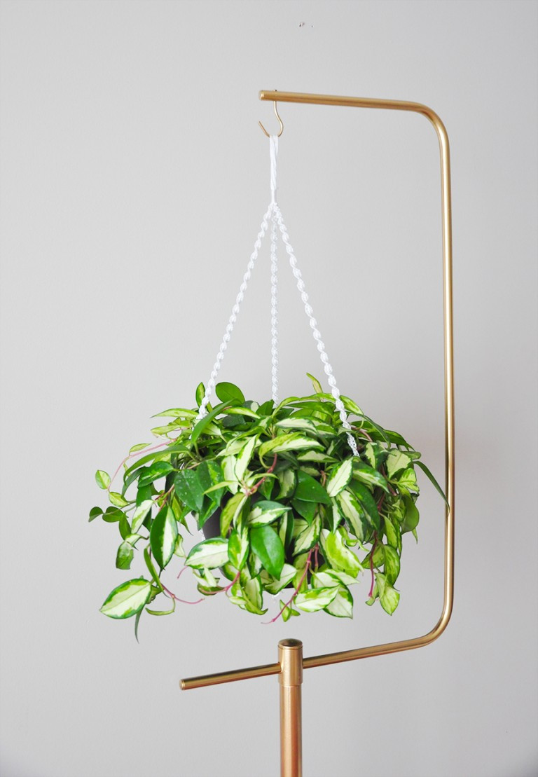 Hanging Plant Holders Best Of Diy Macramé Plant Hanger Gold Plant Stand Of Wonderful 48 Ideas Hanging Plant Holders