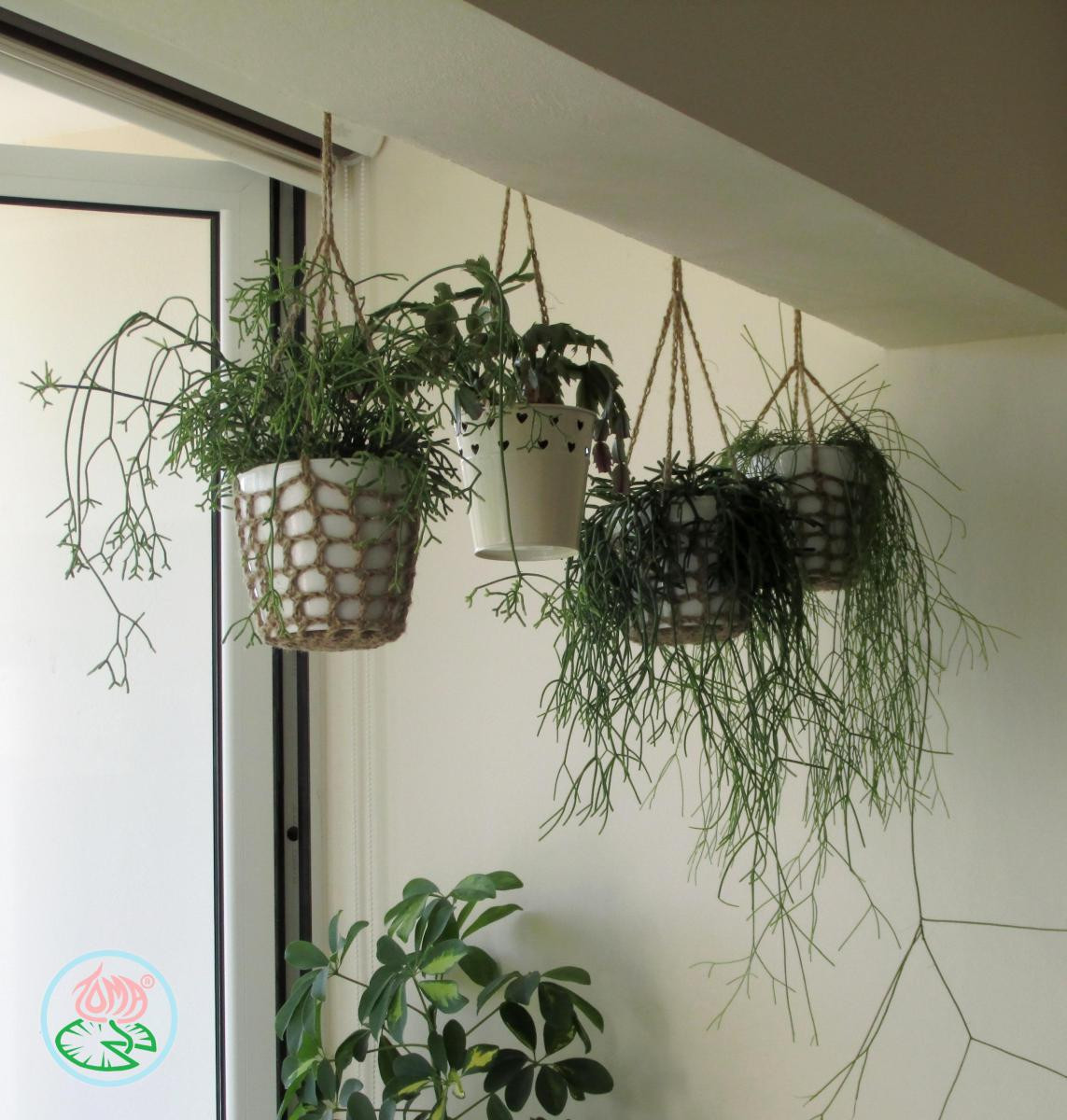 Hanging Plant Holders Fresh Free Pattern Crochet Hanging Plant Pot Holder Of Wonderful 48 Ideas Hanging Plant Holders
