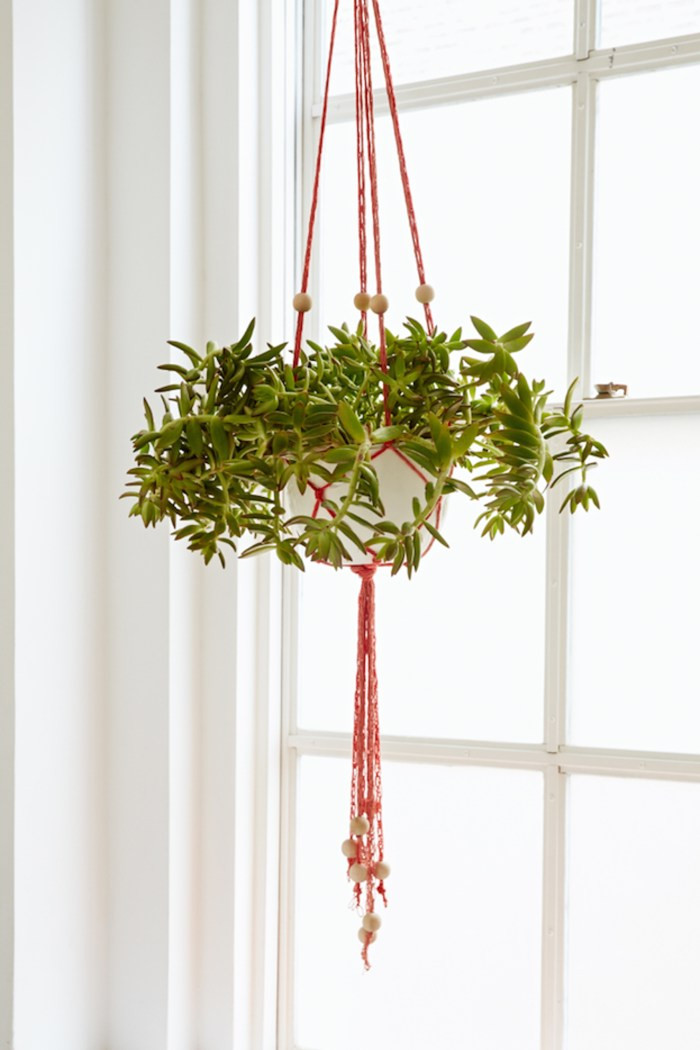 Hanging Plant Holders Inspirational Diy Finger Knit Hanging Plant Holder Flax & Twine Of Wonderful 48 Ideas Hanging Plant Holders