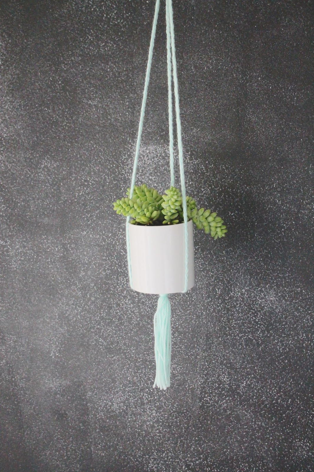 Hanging Plant Holders Lovely Do It Yourself Hanging Plant Holder Of Wonderful 48 Ideas Hanging Plant Holders
