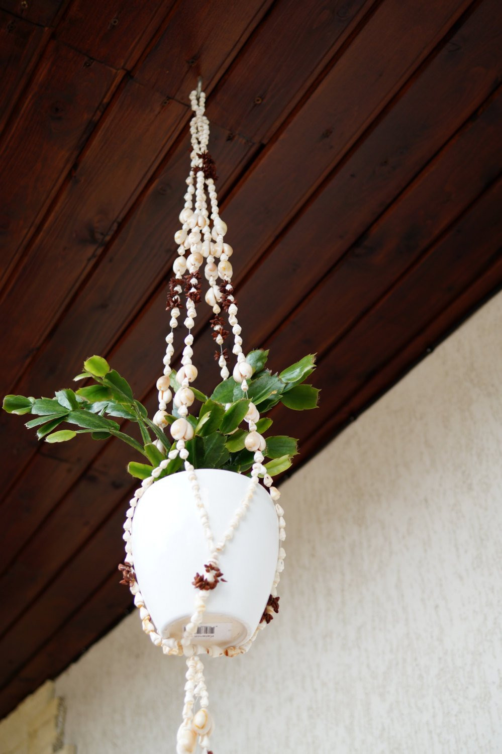 Hanging Plant Holders Luxury Shell Macrame Plant Hanger Flower Pot Holder Hanging Plant Of Wonderful 48 Ideas Hanging Plant Holders