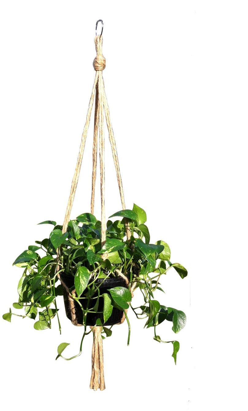 Hanging Plant Holders New Hanging Basket Plant Hanger Holders for Indoor and Of Wonderful 48 Ideas Hanging Plant Holders