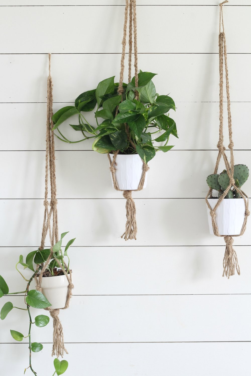 Hanging Plant Holders Unique Simple Diy Macrame Plant Hanger with Video Tutorial Of Wonderful 48 Ideas Hanging Plant Holders