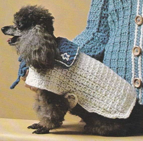 Inspirational 132 Best Images About Crochet Pet Fashion and Knitting Patterns for Dog Sweaters for Beginners Of Luxury 41 Pictures Knitting Patterns for Dog Sweaters for Beginners