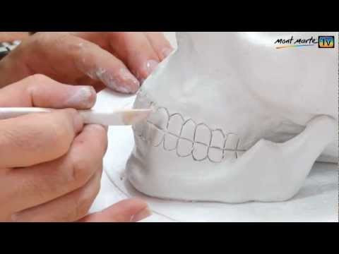 Inspirational Art Lesson How to Make A Skull Using Air Hardening Air Hardening Clay Of Gorgeous 45 Models Air Hardening Clay