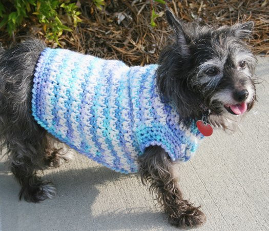 Inspirational Dog Sweater Crochet Pattern Knitting Patterns for Dog Sweaters for Beginners Of Luxury 41 Pictures Knitting Patterns for Dog Sweaters for Beginners