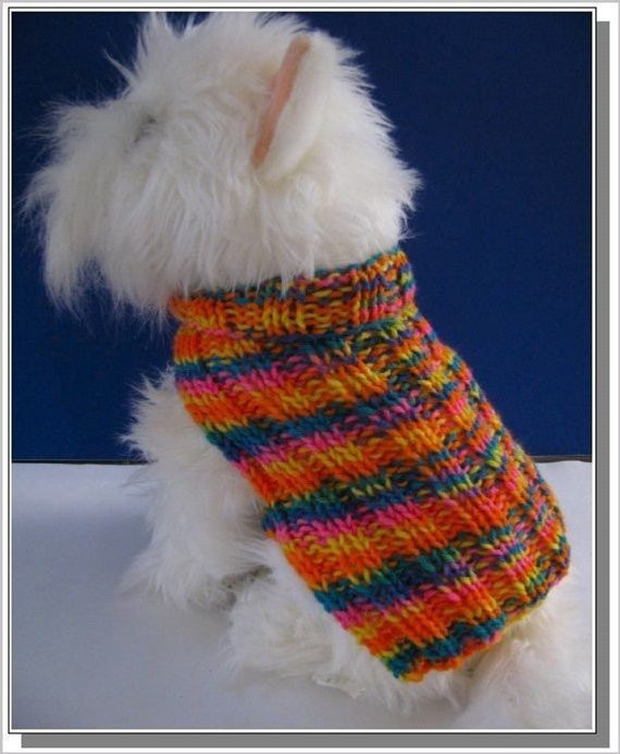 Inspirational Dog Sweater Knitting Pattern Basic Ribbed Design Very Easy to Easy Dog Sweater Knitting Pattern Of Innovative 50 Models Easy Dog Sweater Knitting Pattern