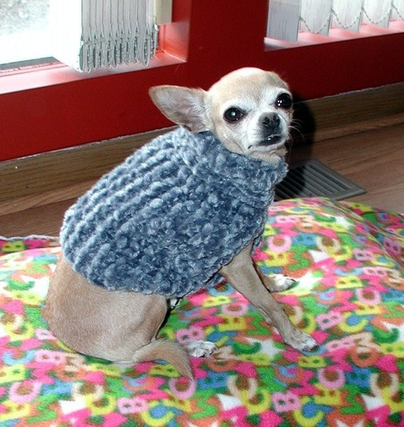 Inspirational Pdf Knitting Pattern for the Easy Chenille Dog Sweater Easy Knit Dog Sweater Of Charming 49 Ideas Easy Knit Dog Sweater