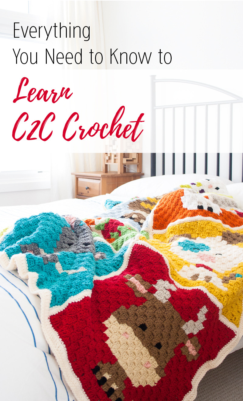 Learn to Crochet Beautiful Crochet and Happiness Pride Of Top 49 Pictures Learn to Crochet