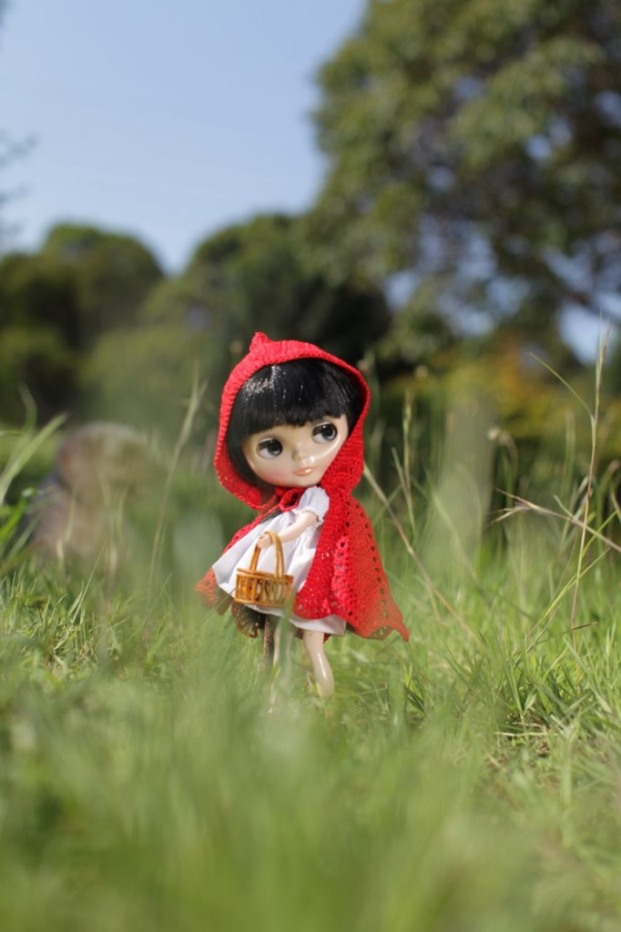 Little Red Riding Hood Doll Awesome Blythe Doll Red Riding Hood Of Delightful 49 Models Little Red Riding Hood Doll