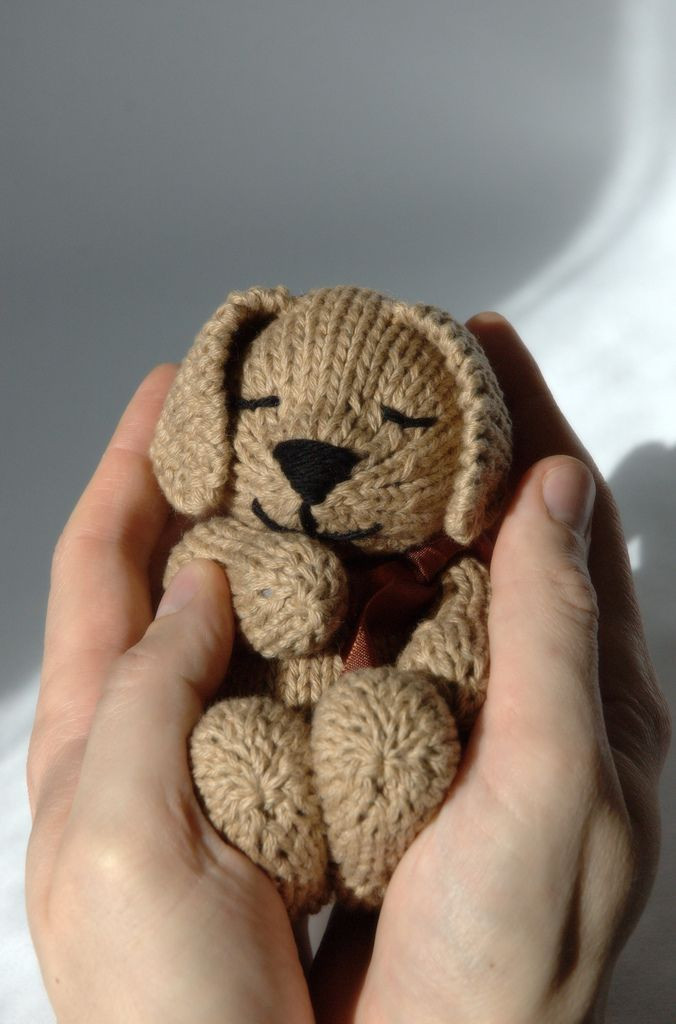 Lovely 25 Best Ideas About Knitting toys On Pinterest Free Animal Knitting Patterns Of Delightful 47 Ideas Free Animal Knitting Patterns