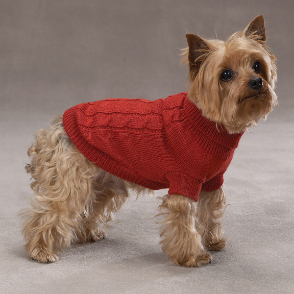 Lovely Basic Cable Knit Dog Sweater Rust Easy Knit Dog Sweater Of Charming 49 Ideas Easy Knit Dog Sweater