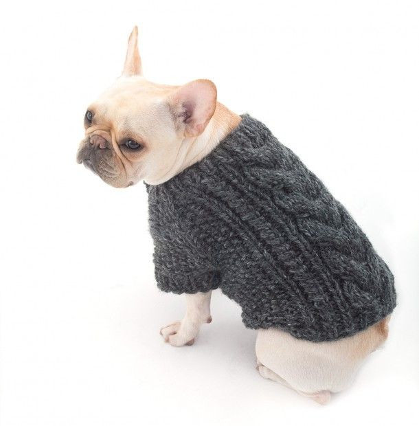 Lovely Best 25 Dog Jumpers Ideas On Pinterest Dog Knitting Patterns Free Of Superb 44 Pictures Dog Knitting Patterns Free