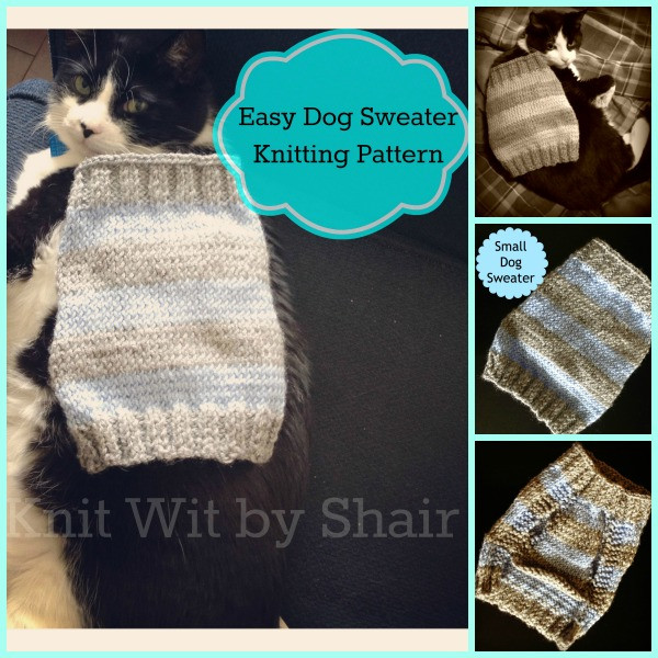 Easy Dog Sweater Knitting Pattern The Knit Wit by Shair