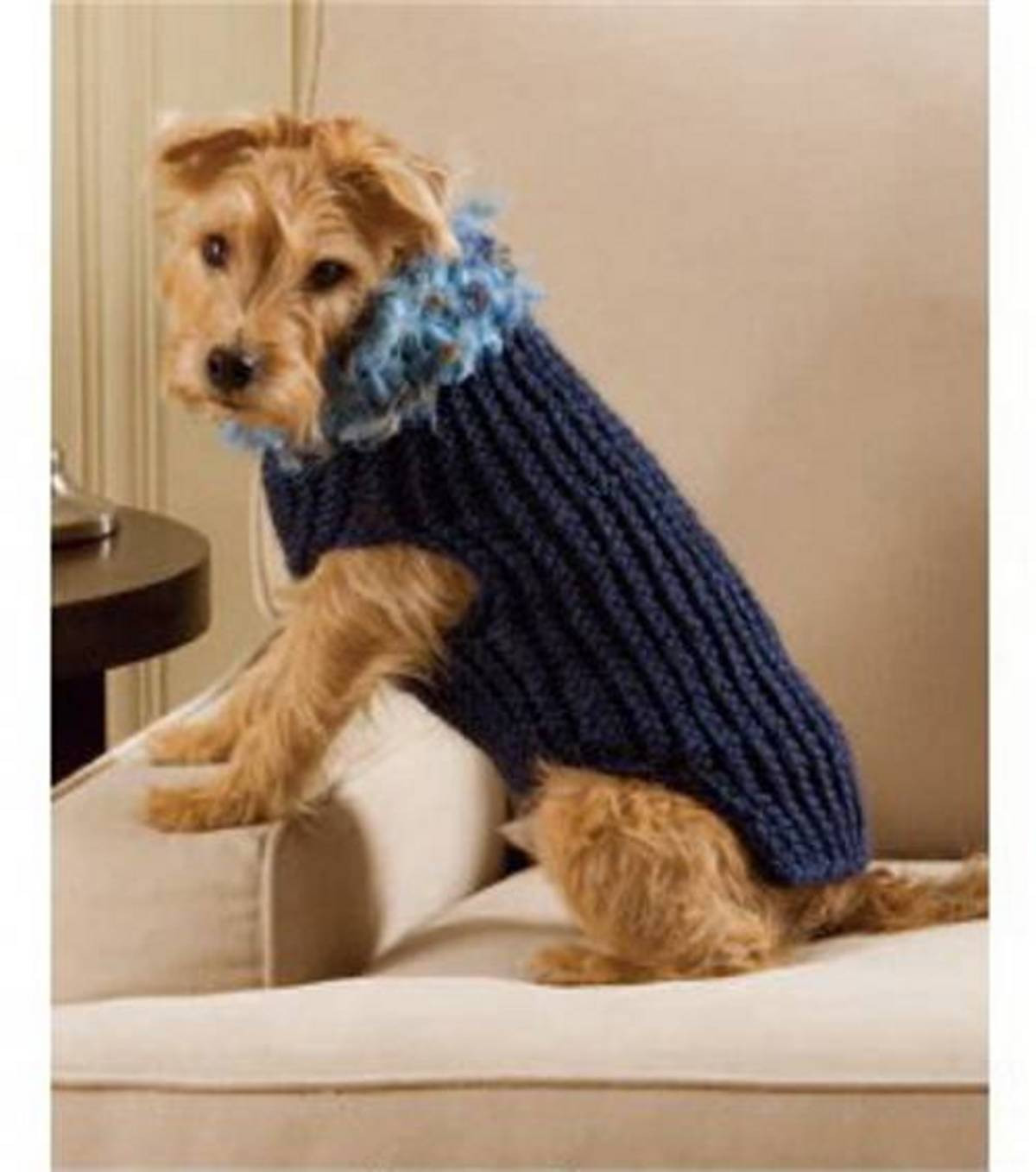 Lovely Easy to Loom Dog Sweater at Joann Easy Dog Sweater Knitting Pattern Of Innovative 50 Models Easy Dog Sweater Knitting Pattern