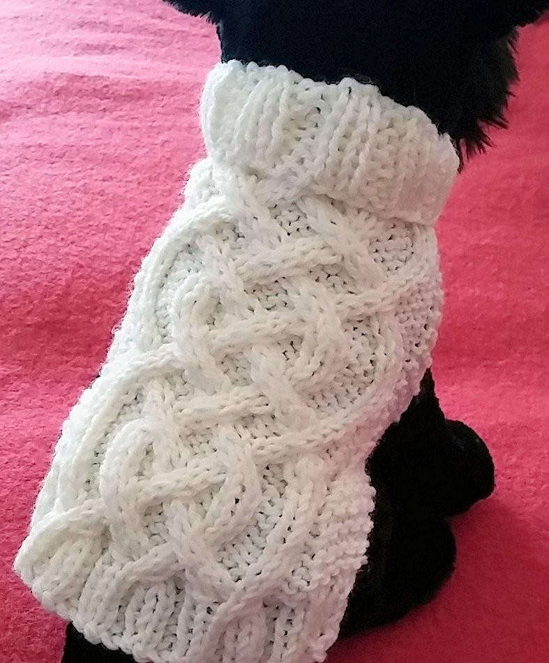 Lovely Knit Dog Sweater Knitting Pattern Celtic Braid Design Knitting Patterns for Dog Sweaters for Beginners Of Luxury 41 Pictures Knitting Patterns for Dog Sweaters for Beginners
