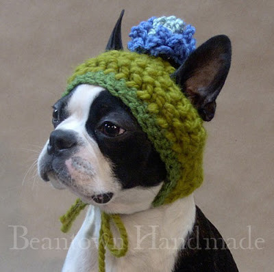 Studying Animals Knitted Hats and Sweaters for Cats and Dogs