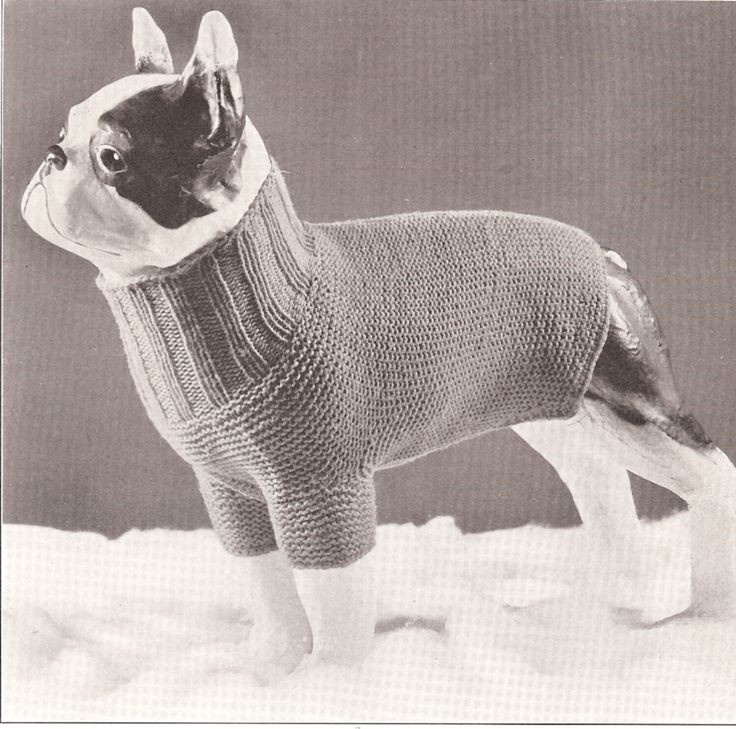 Luxury 20 Best Images About Ps Oblečky On Pinterest Easy Knit Dog Sweater Of Charming 49 Ideas Easy Knit Dog Sweater