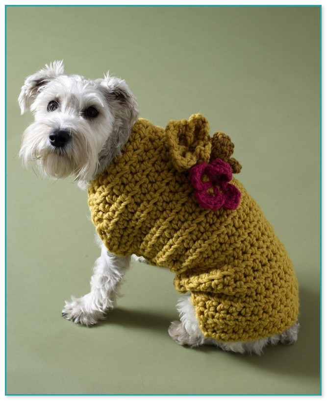 Luxury Crochet Patterns for Dog Sweaters for Small Dogs Free Crochet Pattern for Small Dog Sweater Of Adorable 48 Images Free Crochet Pattern for Small Dog Sweater
