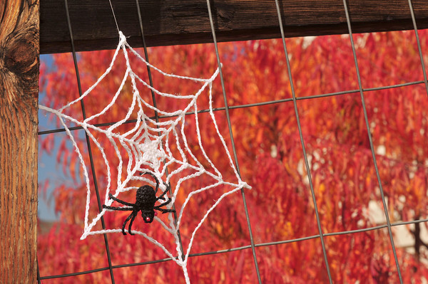 Spooky and Crafty Crochet Halloween Decorations