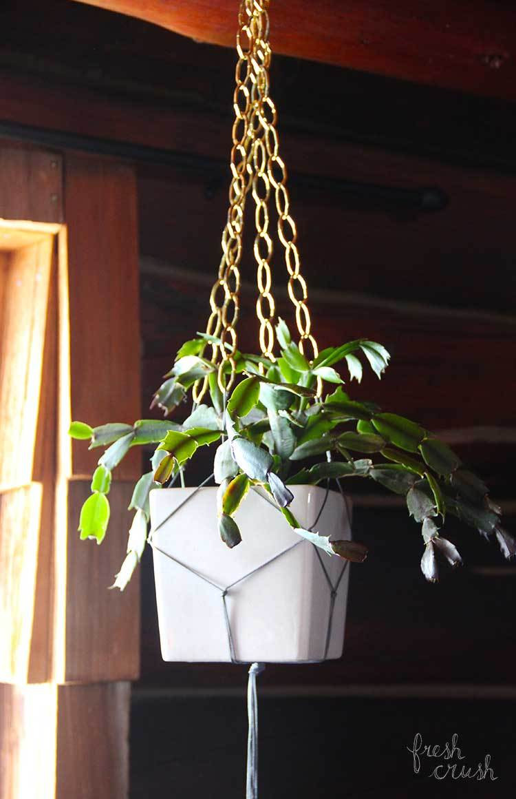 Macrame Plant Holder Elegant Make Your Own Macramé and Chain Plant Holder Fresh Crush Of Luxury 45 Images Macrame Plant Holder