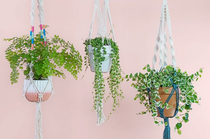 Macrame Plant Holder Inspirational How to Make A Macramé Plant Hanger Ftd Of Luxury 45 Images Macrame Plant Holder