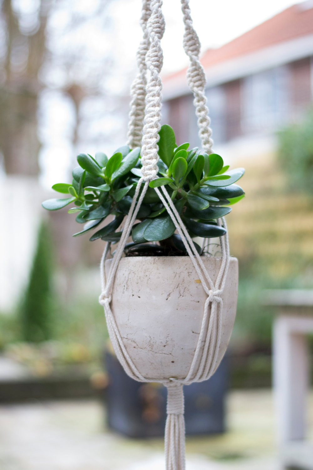 Macrame Plant Holder Unique Macrame Plant Hanger Plant Holder Hanging Planter Home Of Luxury 45 Images Macrame Plant Holder