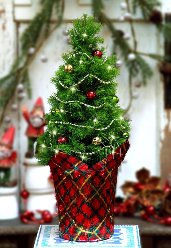 Mini Christmas Tree Decorations Best Of the 50 Best and Most Inspiring Christmas Tree Decoration Of Luxury 50 Pictures Mini Christmas Tree Decorations