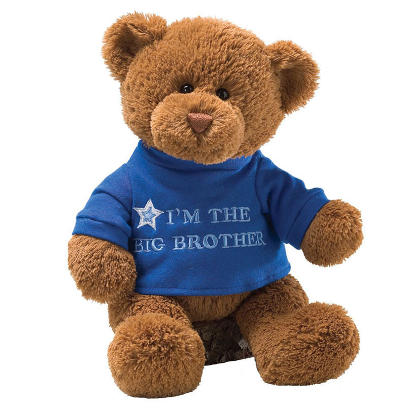 New Buy Gund I Am the Big Brother Plush Teddy Bear Stuffed Bears for Sale Of New 48 Ideas Stuffed Bears for Sale