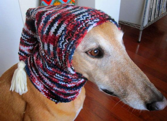 New Dog Hats Hand Knit Dog Hat Greyhound Hat Whippet Hat Hound Knitted Dog Hats Of Innovative 49 Images Knitted Dog Hats