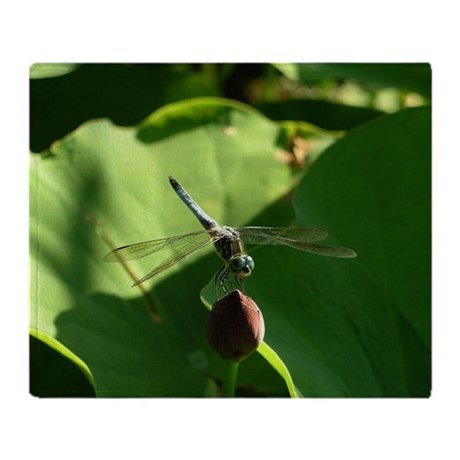 New Dragonfly Throw Blanket by Admin Cp Dragonfly Blanket Of Incredible 45 Ideas Dragonfly Blanket