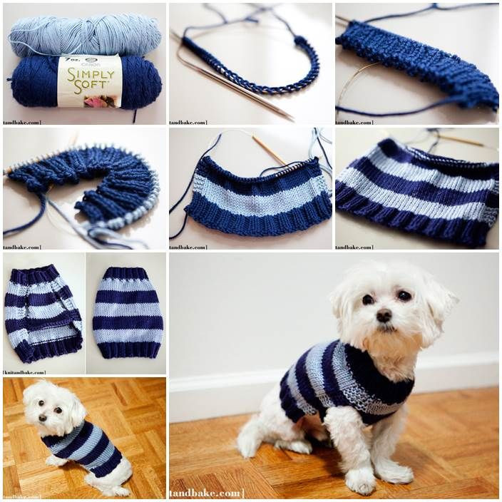 easy crochet dog sweater tutorial Crochet and Knit