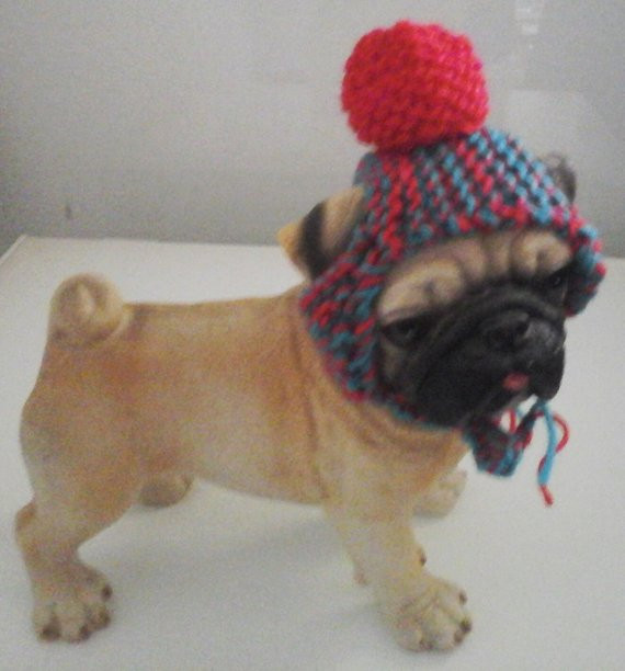 New Knitted Cat Hat Dog Hat Hats for Cats Hamster Clothing Pet Knitted Dog Hats Of Innovative 49 Images Knitted Dog Hats